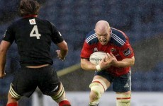 Munster and Toulon in full agreement, calling mooted Paul O'Connell move 'pure speculation'