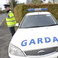 Shots fired as gardaí seize firearm and cash in Co Wicklow
