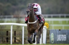 3 longshots who could win you a few quid on day one of the Punchestown Festival