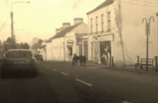 Two donkeys had a row in the middle of the street in Cavan
