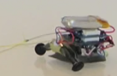 This tiny robot can drag objects thousands of times its own weight