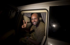 Gaddafi's son reappears in Tripoli a day after his 'capture'