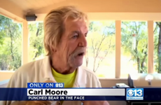 An old man punched a bear in the face to save his tiny dog, is a legend
