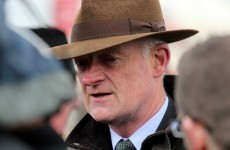 Willie Mullins broke his own record for winners at Punchestown this week