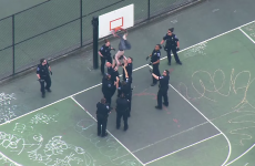 A rake of police had to rescue a man who got stuck in a basketball net