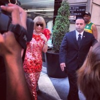 A Kerry jersey played an important cameo in Anna Wintour's Met Ball journey