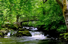 This video of a Leitrim waterfall has lulled millions of people off to sleep