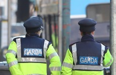Garda left scarred and with PTSD after being hit by stolen car