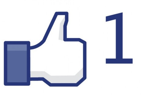 Facebook's 'Like' button has become a staple of the web - but German officials believe it to be in breach of EU privacy laws.