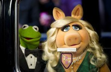 Big news: The Muppets are making a return to television