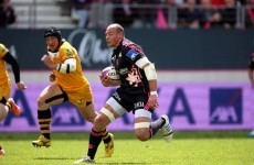 The red card Sergio Parisse picked up last weekend highlights one of rugby's daftest laws
