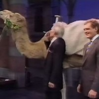 Last Late Show: 8 of the most memorable Irish moments on Letterman
