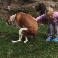 This little girl had some hilarious words of encouragement for her dog