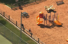 Woman found pushing her dead son on swings