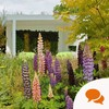 5 reasons you should go to Bloom this weekend