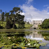 9 beautiful gardens in Ireland you should visit soon