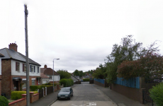 Murder investigation launched after body of boxer found in house