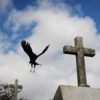 Shocking US experiments on Guatemalans revealed