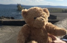 Good news: 'Seánie bear' has been reunited with his owner