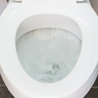 Here are the top 15 items Irish people flush down the loo (that they shouldn't)