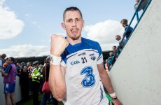 Galway and Waterford lead the way in The42's hurling team of the weekend