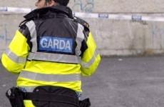 Two charged over €200,000 cannabis farm raid