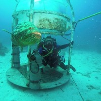 Scientists have built a lab 62 feet under the sea - but they aren't using it to explore the ocean