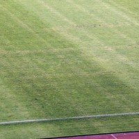Croatia issues apology after swastika symbol appears on pitch
