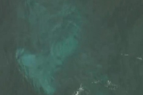 The outline of the submerged plane is clearly visible from above