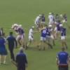 VIDEO: Ugly scenes in Waterford club hurling as brawl brings two red cards