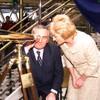 Celia Larkin on Bertie: 'I gave him an earful regularly'