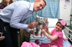 In pictures: Cats visit children's hospital in Crumlin