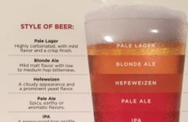 This handy infographic explains the differences between every sort of beer