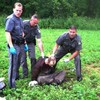 Second killer who escaped prison shot and captured by police