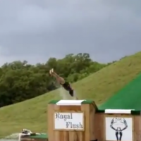 You will feel the pain of this woman's spectacular backflop