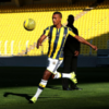 Nani is no longer a Man United player and it appears RVP will be joining him in Turkey