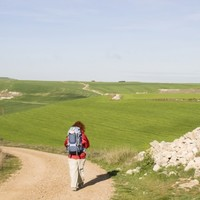 The Camino de Santiago is coming back to Dublin after almost 800 years