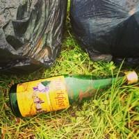 5 alternative names for your bottle of Buckfast