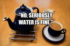 12 essential facts of life for people who don't drink tea