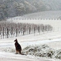 There's been heavy snow in Australia and people don't know what's going on