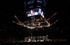 With no fights scheduled, what's next for the Irish in the UFC?