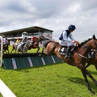 How to react when your horse wins at the Galway Races - A guide by The42