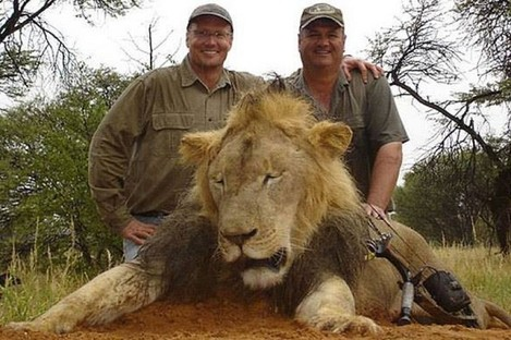 Walt Palmer, left and another lion.