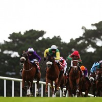 Our 5/1 tip for the Galway Races today