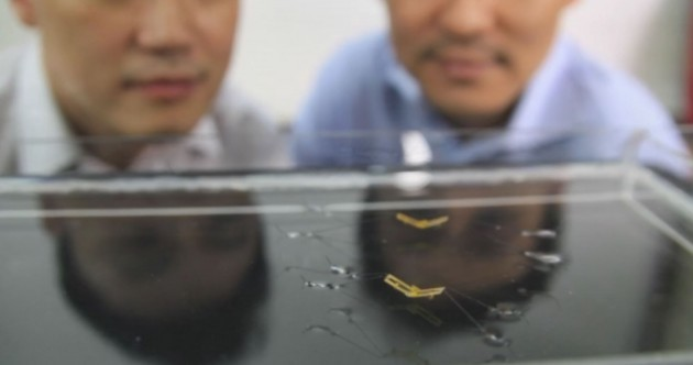 This tiny robot can jump from water without making a splash