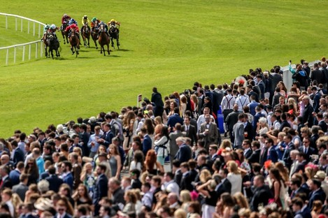 There's been a record number of punters at Ballybrit this week.