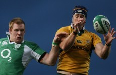 What should Munster fans expect from new signing Mark Chisholm?