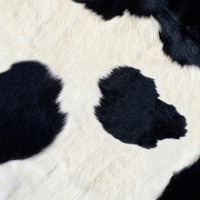 Woman in cow-print onesie holds man at gunpoint in 3am robbery