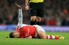 'Wilshere has suffered eleven ankle-related injuries in the last two years'