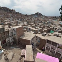 This whole community lives in a sprawling South American graveyard